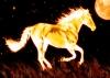 horses101111 - Horzer horse breeder